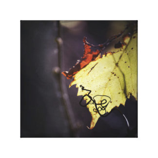 Glowing Green Grape Vine Leaf and Curly Cue Canvas Print