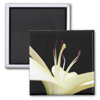 Glowing Lily Magnet