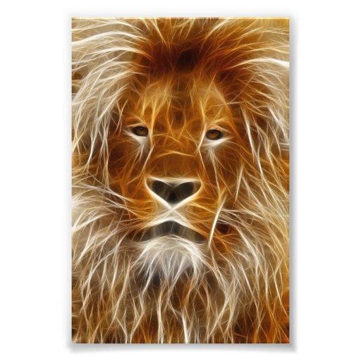 Glowing Lion Portrait Photo Print