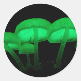 Glowing Mushrooms Round Sticker