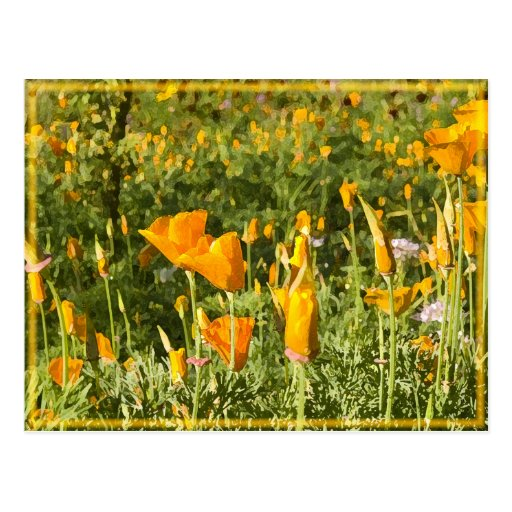 Glowing Poppy Patch Post Card