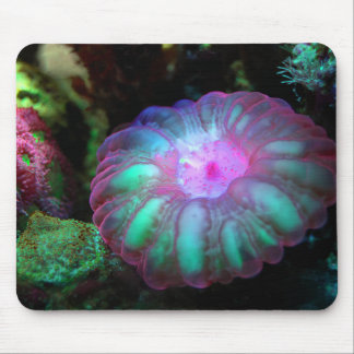 Glowing Undersea Coral Mouse Mat
