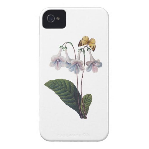 Gloxinia by Pierre Joseph Redoute iPhone 4 Cases