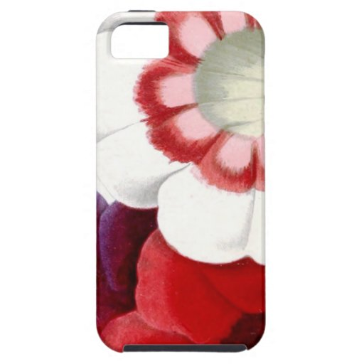 Gloxinias iPhone 5 Cover