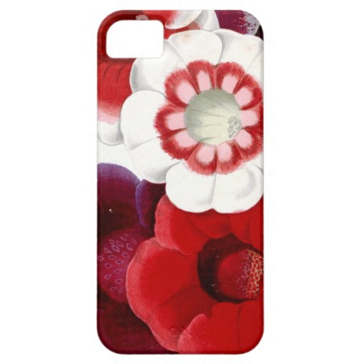 Gloxinias iPhone 5 Case
