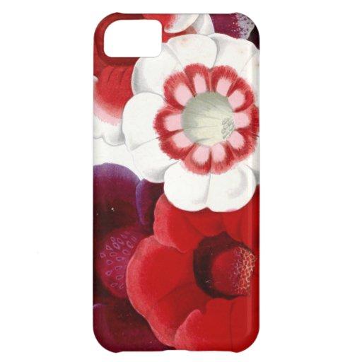 Gloxinias iPhone 5C Cover