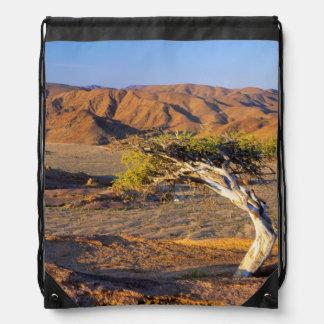 Gnarled Tree And Desert Lands, Richtersveld Drawstring Bag
