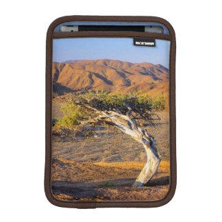 Gnarled Tree And Desert Lands, Richtersveld iPad Mini Sleeve
