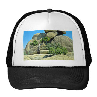 Gnarled Tree, Bushes Among Boulders Trucker Hat