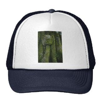 Gnarled tree trunk trucker hat