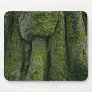 Gnarled tree trunk mousepad
