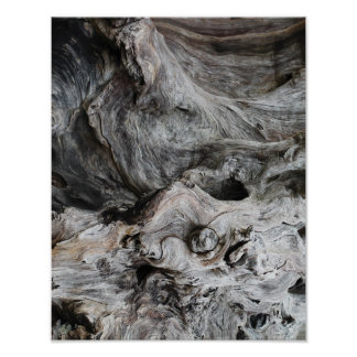 Gnarled Wood Posters