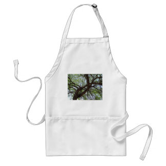 Gnarly Mesquite Branches Standard Apron
