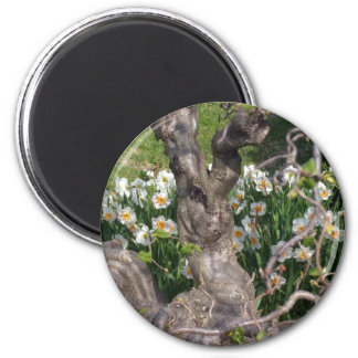 Gnarly Narcissus 6 Cm Round Magnet