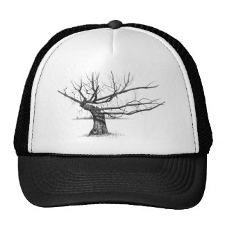 GNARLY OLD TREE PENCIL REALISM ART TRUCKER HATS