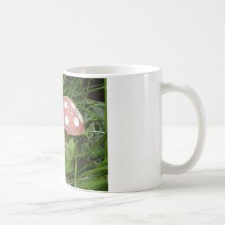 Gnome and Toadstool Coffee Mug