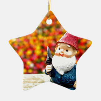 Gnome Field Double-Sided Star Ceramic Christmas Ornament