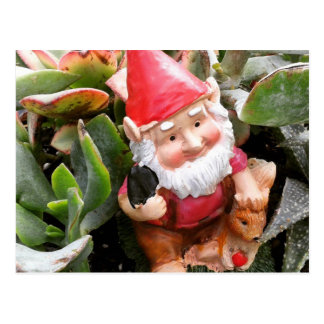 Gnome hiding in the succulents postcard