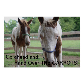 Go ahead and Hand Over THE CARROTS Poster