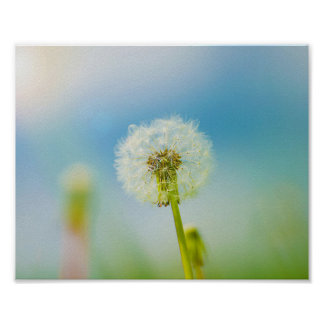 Go Ahead Make a Wish - Dandelion Print