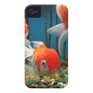 Go Fish iPhone 4 Case-Mate Cases
