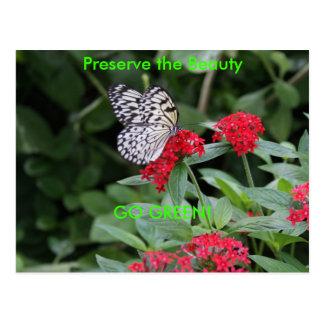 GO GREEN!  Butterfly Beauty Postcard