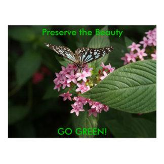 GO GREEN! Butterfly Flower Postcard