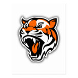 GO TIGERS! POST CARDS