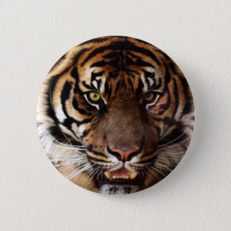 Go Wild Tiger 6 Cm Round Badge