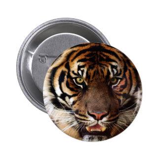 Go Wild Tiger 6 Cm Round Badge