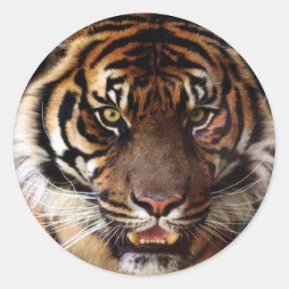 Go Wild Tiger Classic Round Sticker