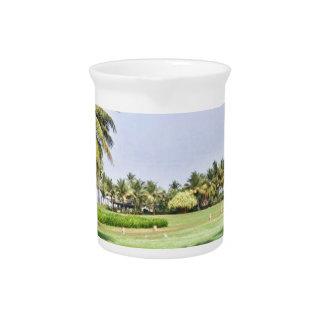 Goa India 2 Drink Pitchers