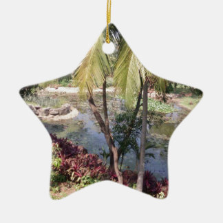 Goa India Garden Ceramic Star Decoration