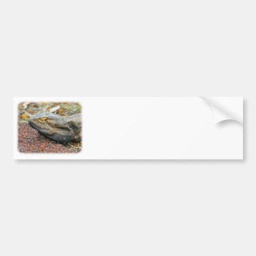 Goanna 9P014D-235 Bumper Sticker