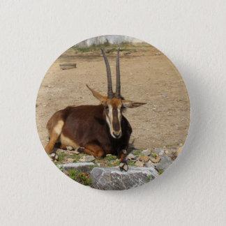 Goat 6 Cm Round Badge