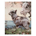 Goat and Kid by E. J. Detmold Poster