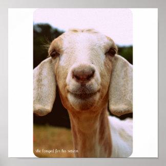 Goat Art Poster