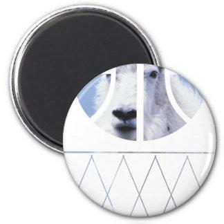 goat basketball 6 cm round magnet