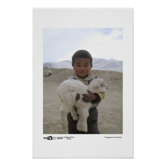 Goat Boy - Photo of the Year Category Winner Poster