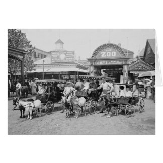 Goat Carriages at Coney Island, 1910 Greeting Card