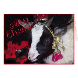 Goat Christmas Card Rufus