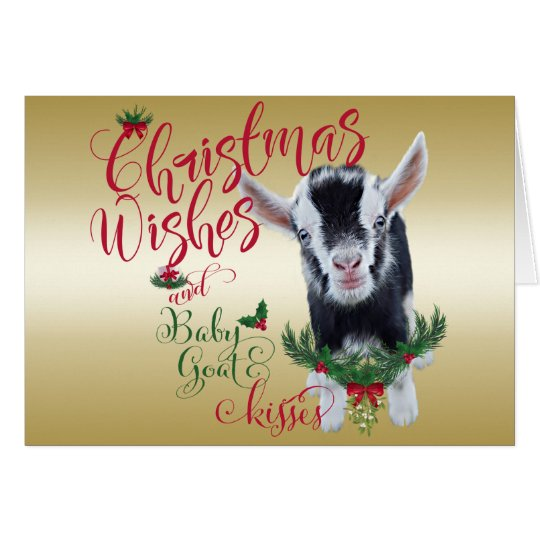 GOAT | Christmas Wishes Baby Goat Kisses Pygmy Card