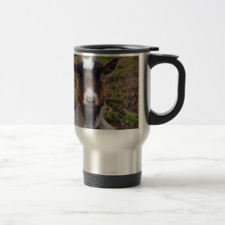 Goat close up. stainless steel travel mug