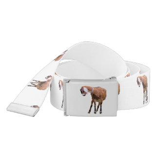 Goat In Repose Belt