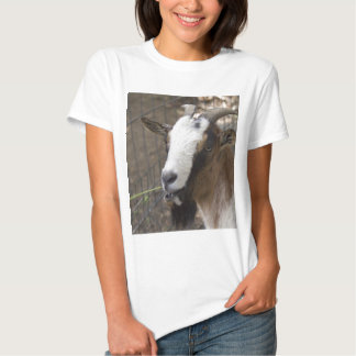 goat in the mountains shirt