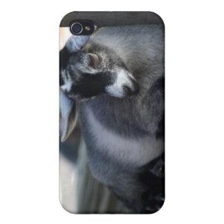 Goat IPhone 4 Case