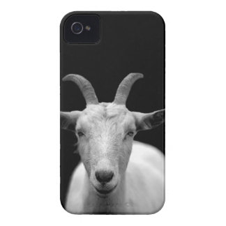 Goat iPhone 4 Case-Mate Case