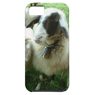 Goat iPhone 5 Cover