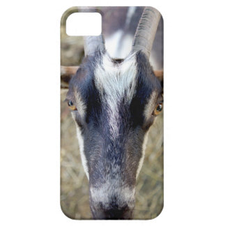 goat looking at you case for the iPhone 5