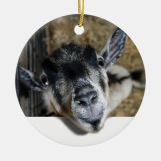 Goat Looking Out Christmas Ornament